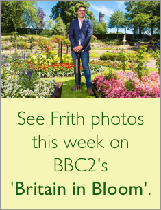 Frith Photos on Britain in Bloom